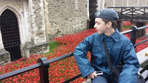 Tower Of London Poppies Cdt Pittman